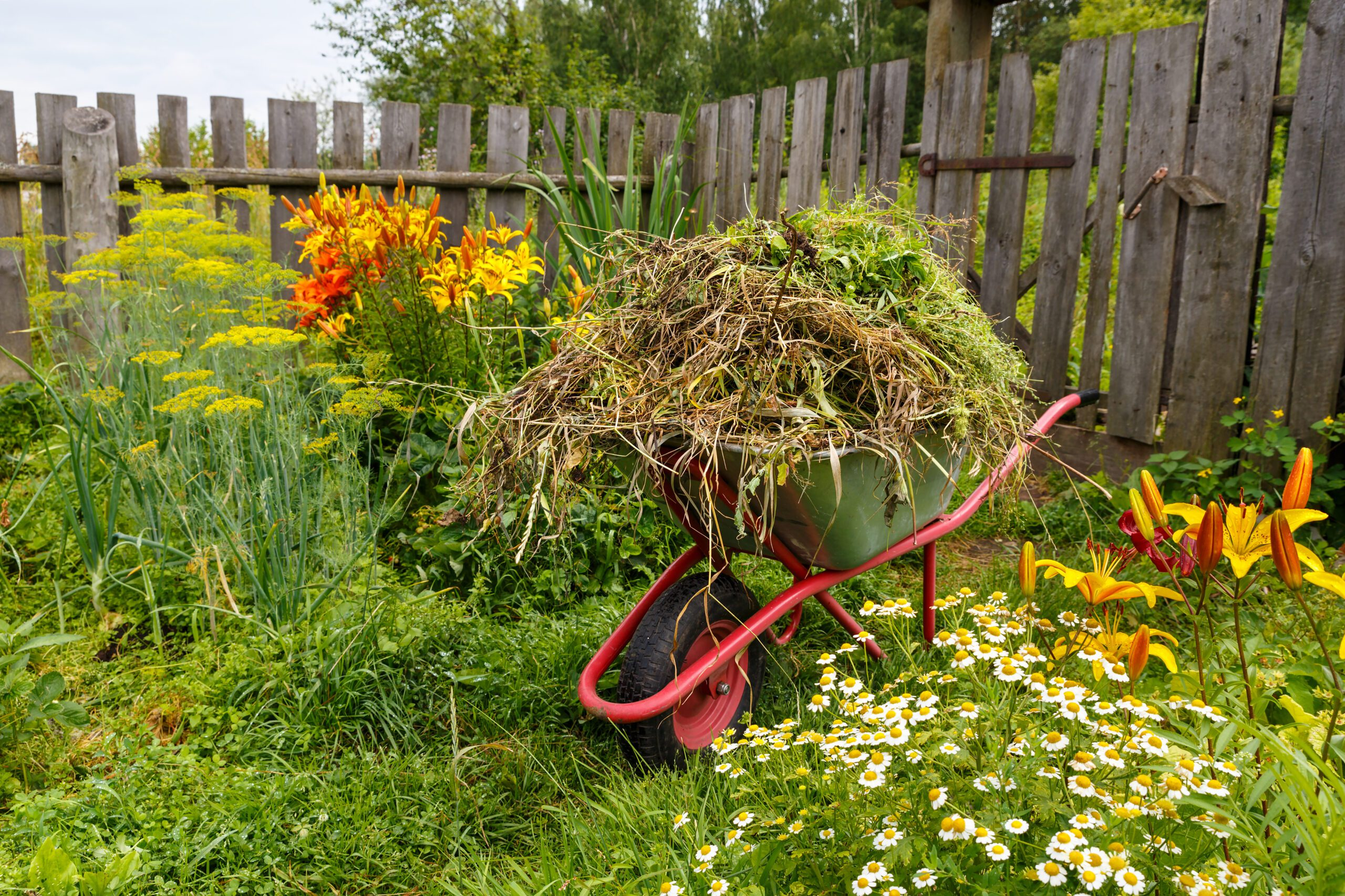 What You Need To Know About Yard Waste Disposal